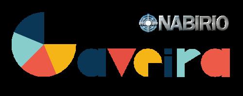 Nabirio Gaveira - Software Gestionale Magazzino e Fatturazione